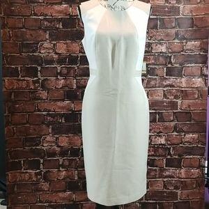 NWT Kasper Dress Size 14 White/Tan